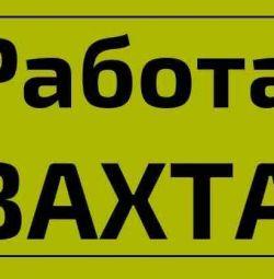 Пакувальники (ці), вахта, Москва