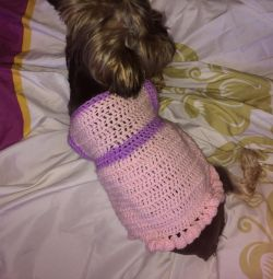 Bluza tricotată