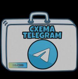 Telegram earnings training case