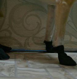 Evcil hayvanlar için ayakkabılar!