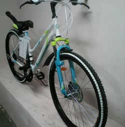 NEWBIKE FOR FAVORITES, ζάντες 26