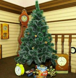 Fluffy Christmas trees with hoarfrost, cones + Gift + Delivery