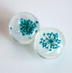 Transparent plugs with dried flowers