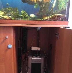 Аквариум 250 литров и рыбы