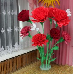 Giant Carnations !!!