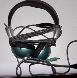 Headphones with a mic.