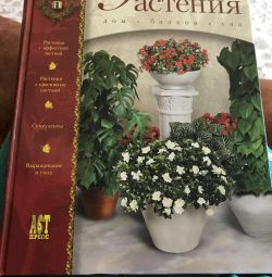 Book of Decorative Plants