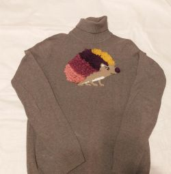 10.2 Sweater with neck