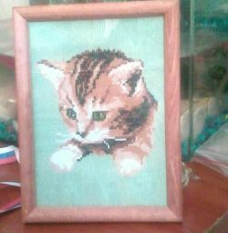 Котeнок в рамке