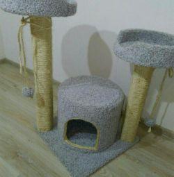 Complex pentru pisici cu pisoi și o casă