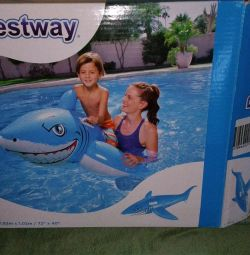 Great inflatable new shark