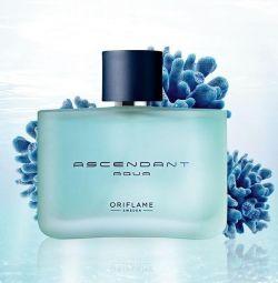 Ascendant Aqua