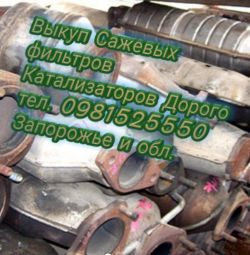 We buy Catalysts and particulate filters Zaporozhye
