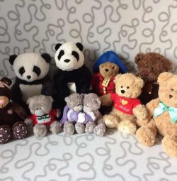 Bear Bears Me to you