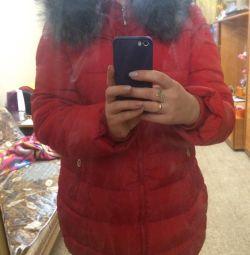 Femeile de iarnă în jos sacou cald