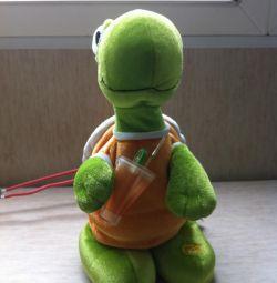 singing turtle