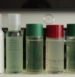 Mini shampoos and lotion in individual bottles