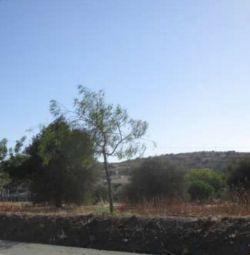 Field in Monagrouli,Limassol