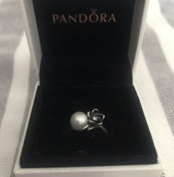 Pandora Ring 16.5 (925 Sterling Silver)