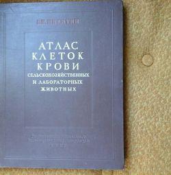 Атлас клеток крови изд.1949г.