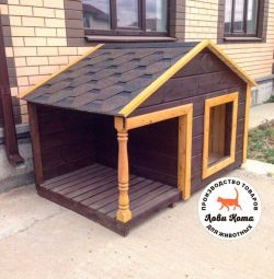 doghouse for dog street