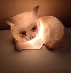 Veioza-CAT