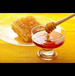 Μέλι 🍯 0,5 L (750 g)