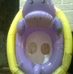 Hippopotamus swimming circle