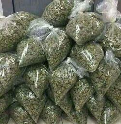 Buy Medical marijuana online +18173822562