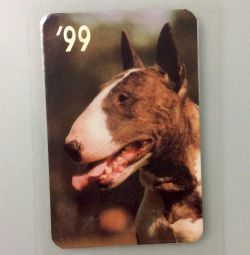Calendar. Dog. Bull Terrier 1999 year. Exchange.
