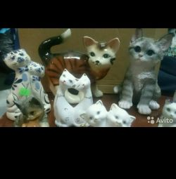 Kittele sunt diferite