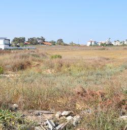 Touristic Field in Perivolia, Larnaca