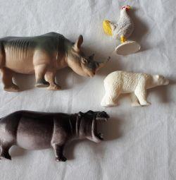 Rhinoceros, hippo, polar bear, chicken
