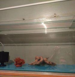 Продам акваріум +