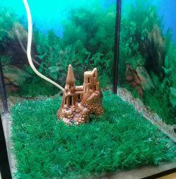 Aquarium 30 l.