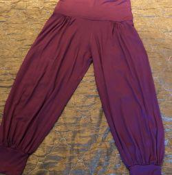Sports pants, yoga breeches