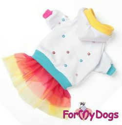Rainbow dress (clothes for dogs)