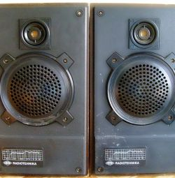 Columns 6AS-221 (Radio Engineering S30A). THE USSR.