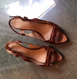 Shoes size 37