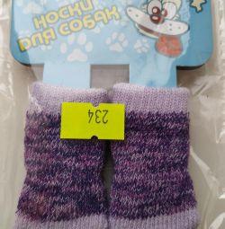 Köpekler için çoraplar yeni