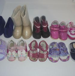 Many shoes to choose from 20 times 12.5 cm. Insole