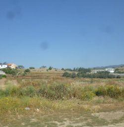 Câmp din Pyrgos, Limassol