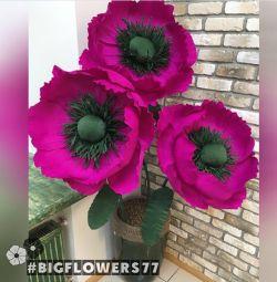 🌺 Διακόσμηση λουλουδιών
