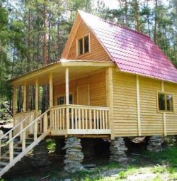 O casă cu albine să doarmă (terapie cu biorezonanță)