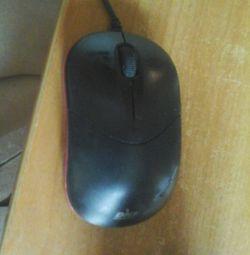 șoarece