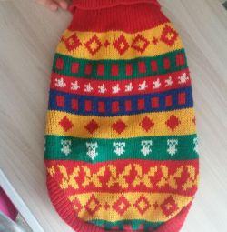 Cămăși / pisică pulover