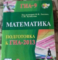 Matematica. GIA 2013