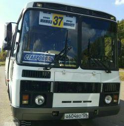 PAZ otobüs siparişi - yolcu taşımacılığı