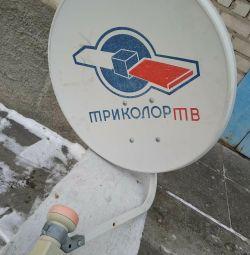 Satellite antenna for two TVs