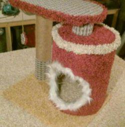 Η γάτα στέκεται